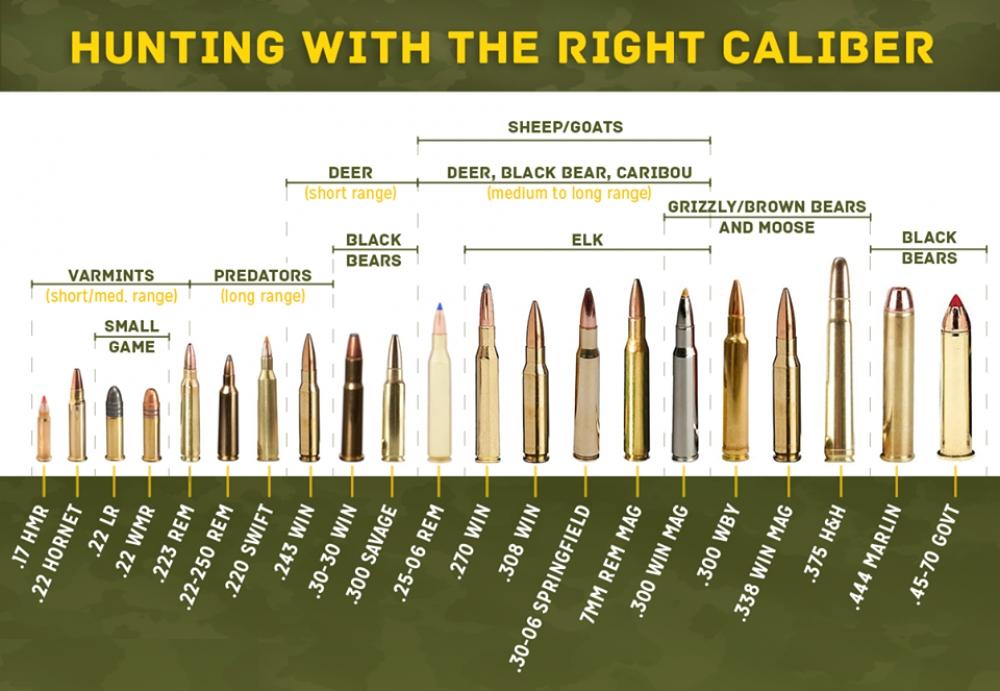 Lovačko oružje i municija F108f1635bee5adcf183ccda569c4270_XL